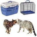 Jaulas transporte gatos