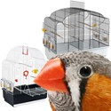 Jaulas doméstica pájaros